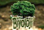 tyt biyoloji konu ve soru dağılımları