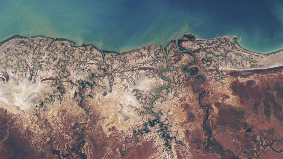 Albert River Deltası