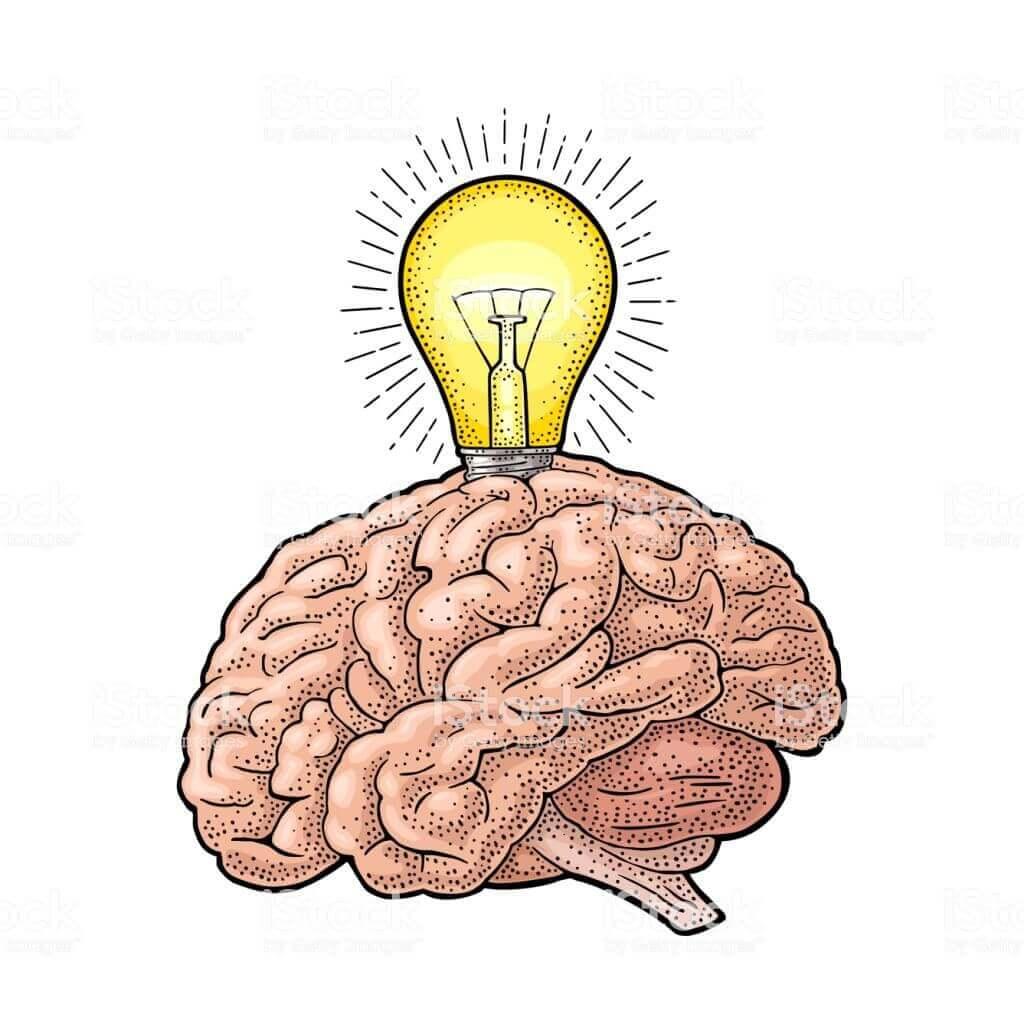 insan beyni ampül